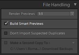 Smart Previews