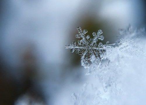 Consejos simples para la fotografía macro de copos de nieve